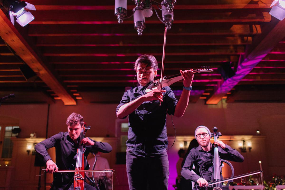 Sternberg Clarke violinist